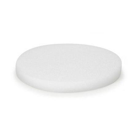 FloraCraft Styrofoam Disc, White, 10 inches