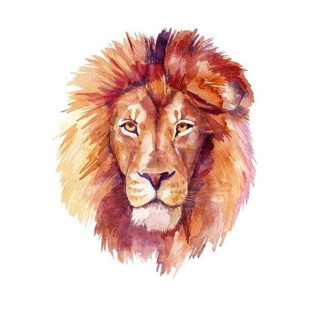 Lion Home Wall Shelf Decor Animal Decorations Watercolor Prints](Shelf Decorations)