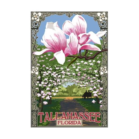 Tallahassee, Florida - Magnolia Trees Print Wall Art By Lantern Press - Party City In Tallahassee Florida