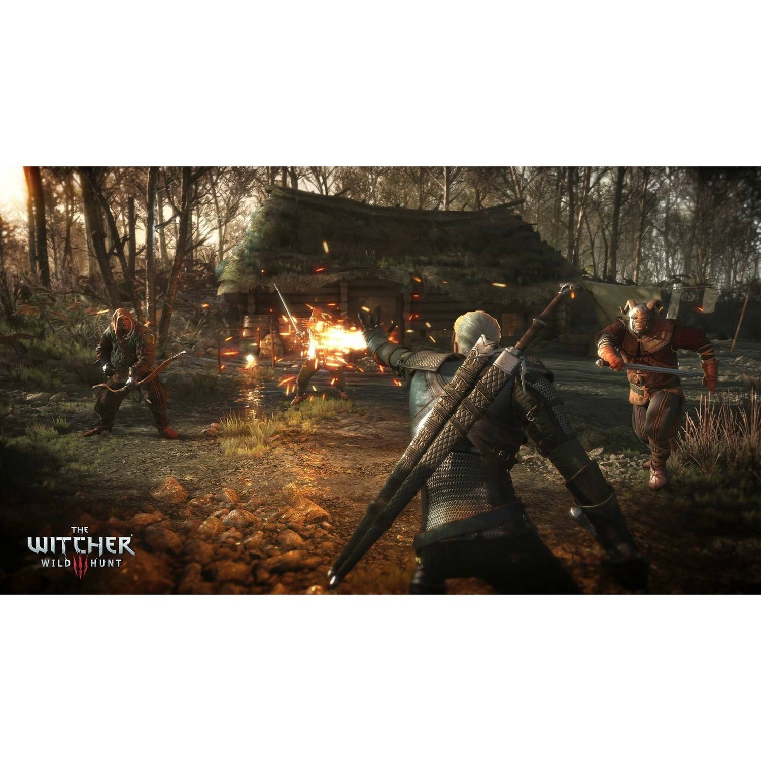 The Witcher 3: Wild Hunt Complete Edition, Warner Bros