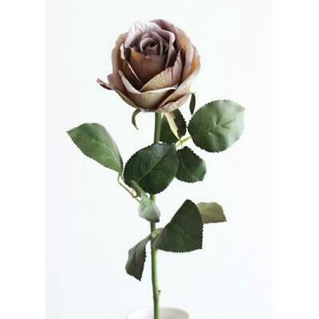 3PK Silk English Cabbage Rose in Antique Plum Purple - 26
