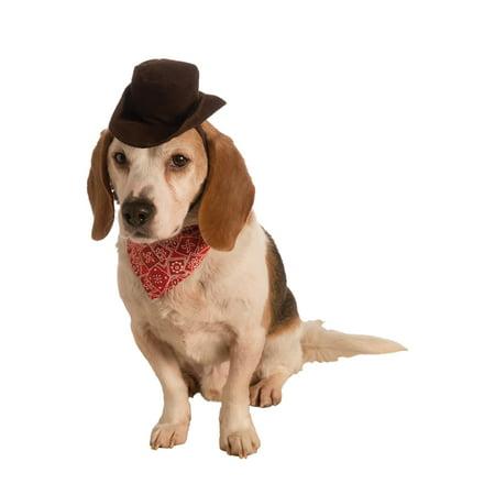 Pet Cowboy Set