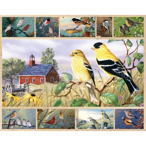 """Jigsaw Puzzle Multi-Picture 1000 Pieces 24""""X30""""-Songbirds"""
