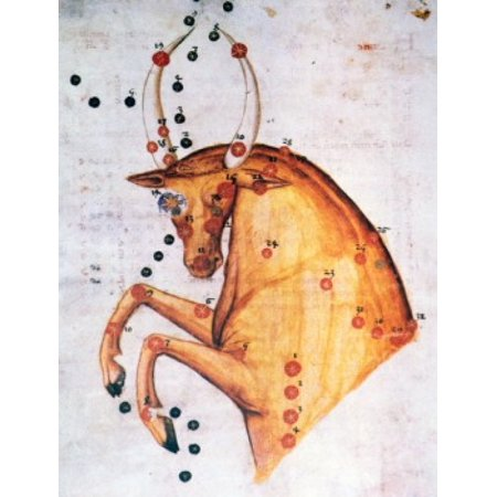 Taurus or Bull Signs of the Zodiac by artist unknown (from Atlas Celeste De Strabov) Canvas Art - (18 x 24)