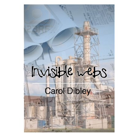 Invisible Webs - eBook