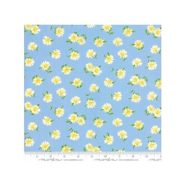Summer Breeze V ~Daisies Light Blue - Cotton Fabric by Moda