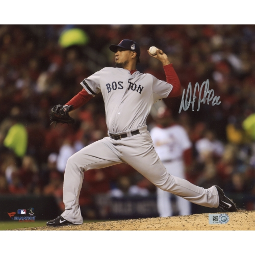 "Felix Doubront Boston Red Sox Fanatics Authentic Autographed 8"" x 10"" Horizontal Gray Uniform Photograph - No Size"