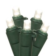 Gerson 66762 - 60 Light 16.5' Green Wire Warm White LED Wide Angle Miniature Christmas Light String Set