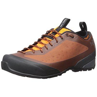 Arc'Teryx men's alpha fl gtx oxide/chutney sneaker 9.5 d (m)