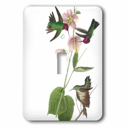Humminbird Switch - 3dRose Hummingbirds with pink flowers vintage, Double Toggle Switch