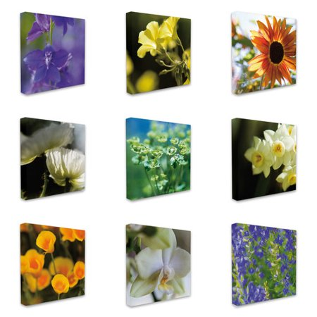 Stupell Industries Photographic Flowers 9 Piece Photographic Print Canvas Set