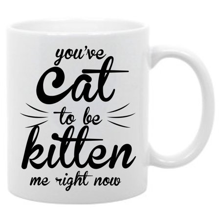 You've Cat to be kitten Me Right Now Funny Animal Humor Coffee Mug - Cheap Coffee Mugs