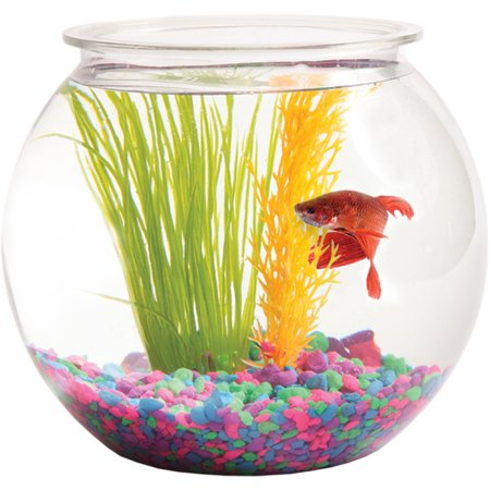Aquarius 1 gallon fish bowl for Beta fish bowl