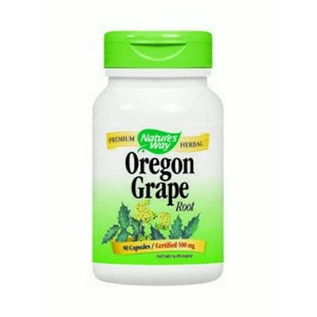 Oregon Grape Root Nature