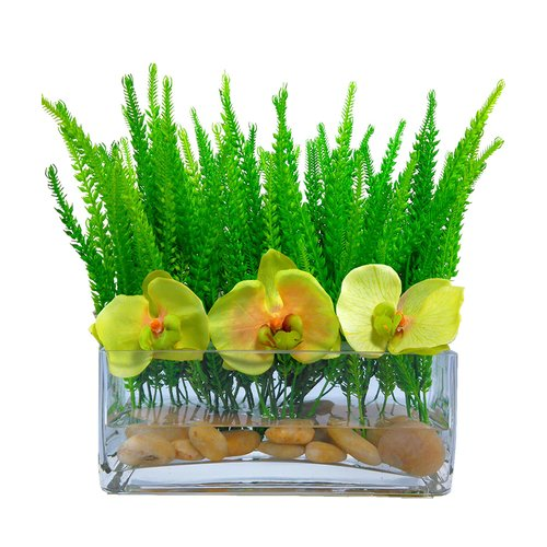 Bloomsbury Market Phalaenopsis Orchid Grass Floral Arrangement in Vase