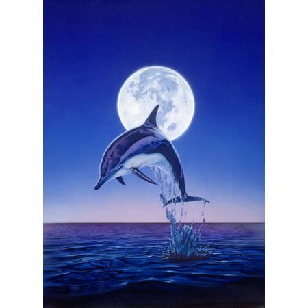 Moonlight Dolphin Stretched Canvas - Robin Koni (12 x (Moonlight Dolphin)
