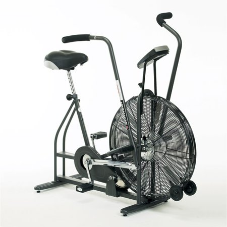 Schwinn airdyne upright exercise bike walmart schwinn airdyne upright exercise bike fandeluxe Gallery