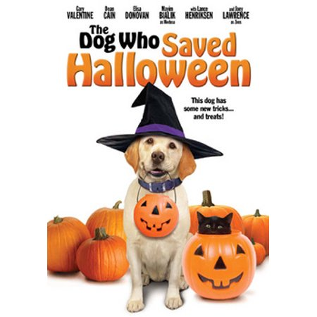The Dog Who Saved Halloween (DVD) (Halloween Parties In Hollywood 2017)