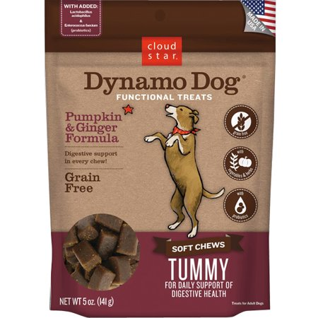 Cloud Star Dynamo Dog Tummy - Pumpkin & Ginger 5 oz Functional Treats (Dog Dressed As Pumpkin)