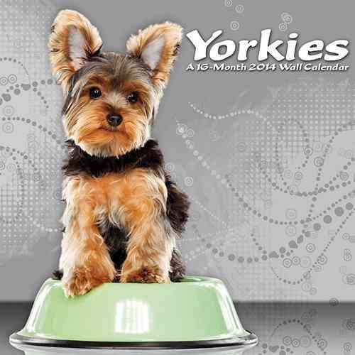 Yorkies 2014 Calendar