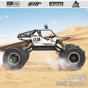 2.4GHz 1/16 High Speed Mini Racing Car Remote Control RC  Car Off-Road Race Car with Shock Absorption System with Durable Tires Birthday Christmas Gift for Boys Kids Adults