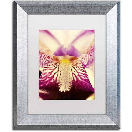 Trademark Fine Art 'Antiqued Iris' Canvas Art by PIPA Fine Art, White Matte, Silver Frame - Irises Framed Canvas