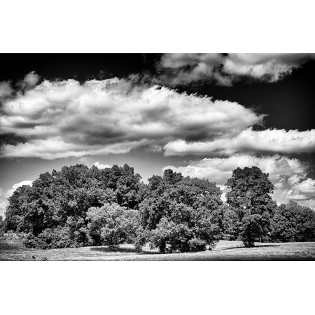 LAMINATED POSTER Monochrome Landscape Rural Country Black And White Poster Print 24 x 36 - Country Posters