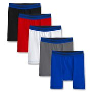 Fruit of the Loom Boys' Big 5 Pack Sport Boxer Brief, Assorted, M