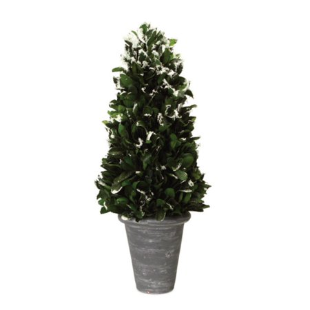 pack of 2 green frosted japanese holly cone artificial christmas tree decorations in pots 21 - Japanese Christmas Tree Decorations