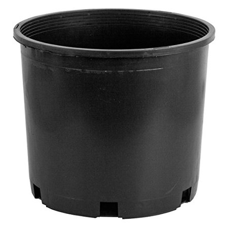 Premium Nursery Pot 5 Gallon (5 per pack) 5 Gallon Oak Barrels