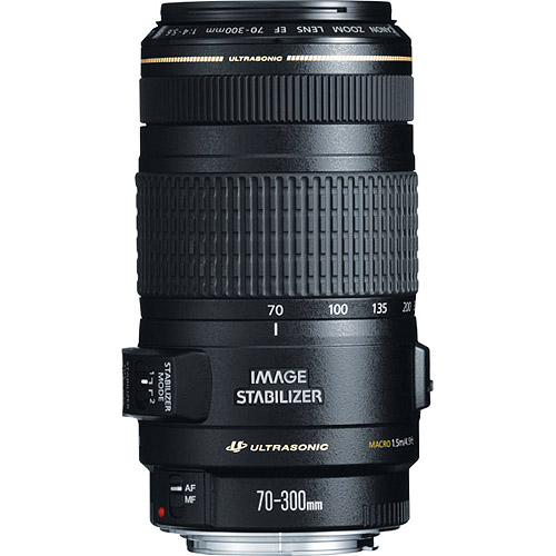 Canon EF 70-300mm f/4-5.6 IS USM Telephoto Zoom Lens (0345B002)