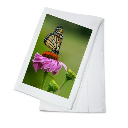 Monarch Butterfly & Flower - Lantern Press Photography (100% Cotton Kitchen - Butterfly Dish