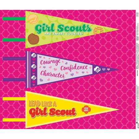 Girl Scouts Felt Pennants Pink Roll: 12 x 28 inches, 3 pk - Halloween Party Games For Girl Scouts