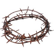 Crown of Thorns Biblical
