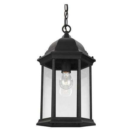 Sea Gull Lighting Glass Diffuser (Sea Gull Lighting Sevier 6238701 Outdoor Pendant Light )