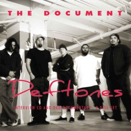 Document (W/Dvd)