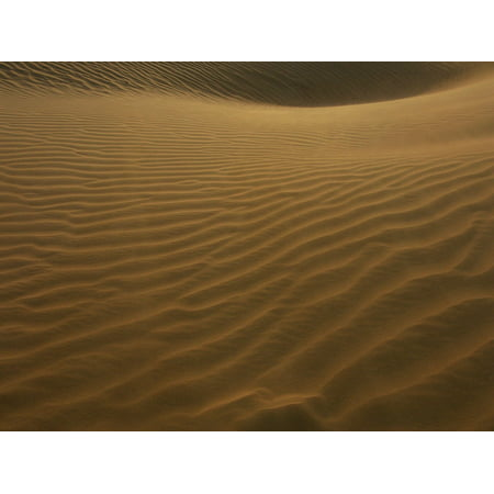 Canvas Print Desert Dune Sand Sand Dunes Wind Patterns Dunes Stretched Canvas 10 x 14 ()