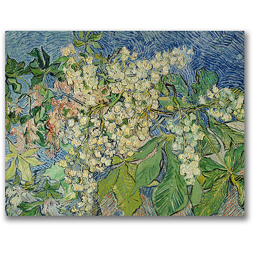 "Trademark Fine Art ""Blossoming Chesnut Branches"" Canvas Wall Art by Vincent van Gogh"
