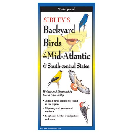 Sibley's Back Birds Of Mid Atl, David Allen Sibley, Publisher - Steven BBM-109 - Steven Lewers