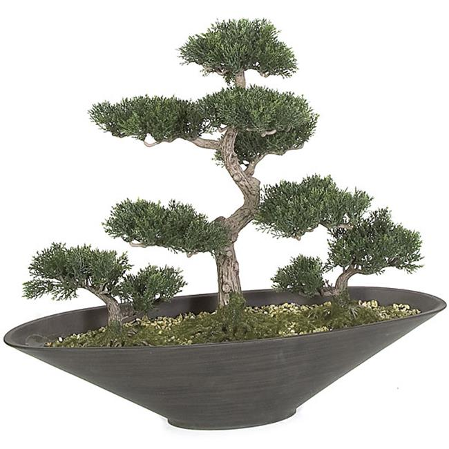 Autograph Foliages A-90600 18 in. Cedar Bonsai, Green by Autograph Foliages