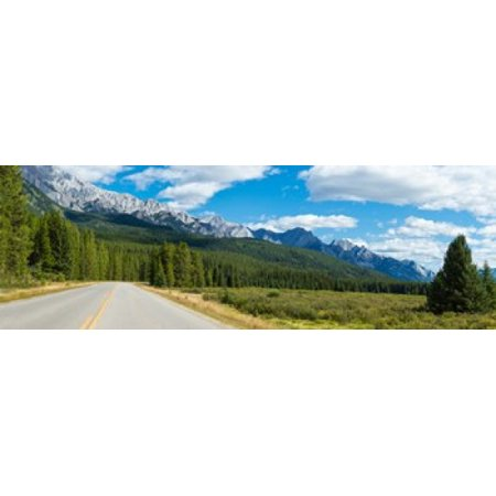 Road passing through a forest Bow Valley Parkway Banff National Park Alberta Canada Poster