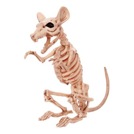 18145 Halloween Decoration Skeleton Rat