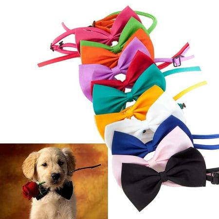 9dd0503523b6 10pcs Pet Dog Bow tie Dog Bowtie Collar Mix 4 Colors Adjustable Neck Tie  Polka Dots Bowties Pet Pet Collars Dog Grooming Accessories - Walmart.com