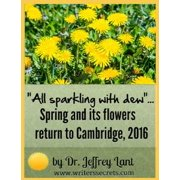 """All sparkling with dew""... Spring and its flowers return to Cambridge, 2016 - eBook"
