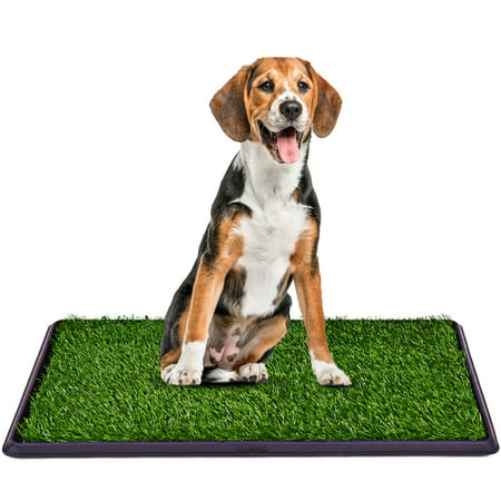 Costway 30''x20'' Puppy Pet Potty Training Pee Indoor Toilet Dog Grass Pad Mat Turf (Best Grass For Dog Pee)