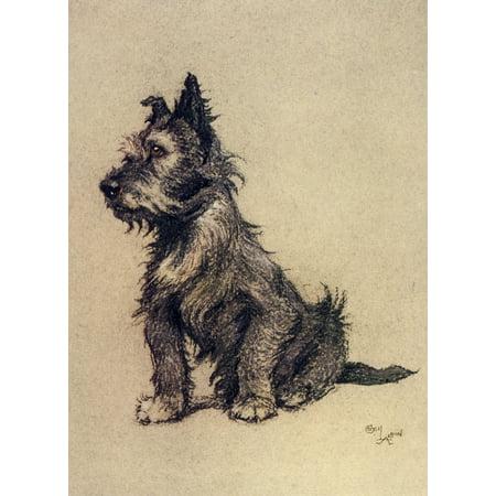 A Dozen Dogs or So 1928 Brandy Stretched Canvas - Cecil Aldin (18 x 24)