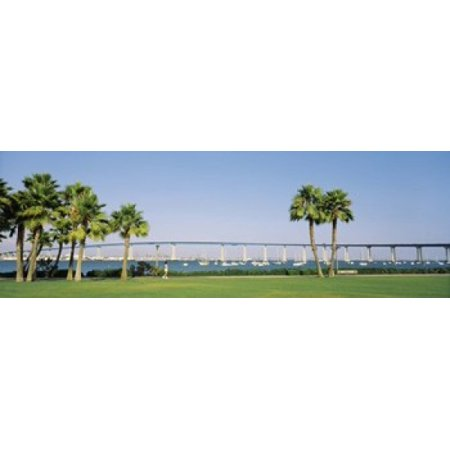 San Diego Coronado Bay Bridge (Palm trees on the coast with bridge in the background Coronado Bay Bridge San Diego San Diego County California USA Poster Print)
