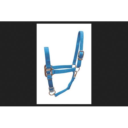 Hamilton Aqua Nylon Halter For Horse Average