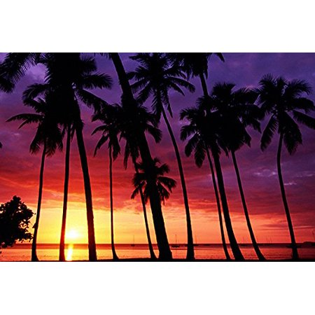 Sunset Shawl (Spectacular Sunset Poster Violet-Amber Sky Palm Trees Sailboat Horizon)