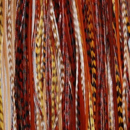 Feather Hair Extension Earth Tone Remix 6-12 Feathers for Hair Extension Includes 2 Silicone Micro Beads and (5